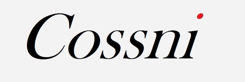 COSSNI (Китай)