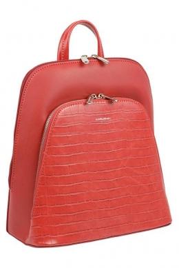 5615 CM RED Сумка-рюкзак David Jones