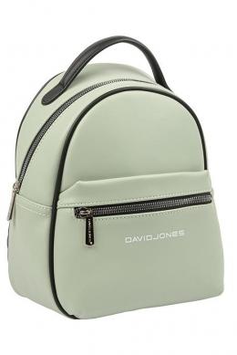 6208-3 PALE GREEN Сумка-рюкзак David Jones